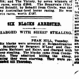 04 Jan 1911 - SIX BLACKS ARRESTED. CHARGED WITH SHEEP STEALING...