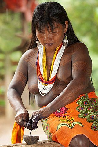 Embera woman, dressed in traditional print skirt and beads with jagua tattoo on her upper body, extracting the juice of a jagua nut used to apply tattoos, Embera Drua Village, Chagres River, Soberania National Park, Panama, Central America