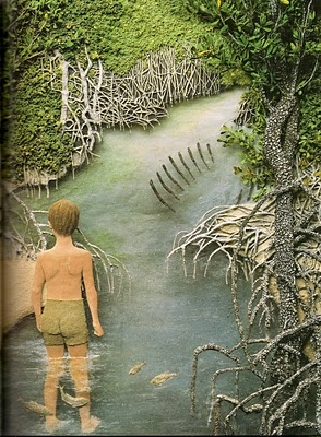Jeanie Baker from where the forest meets the sea picture book