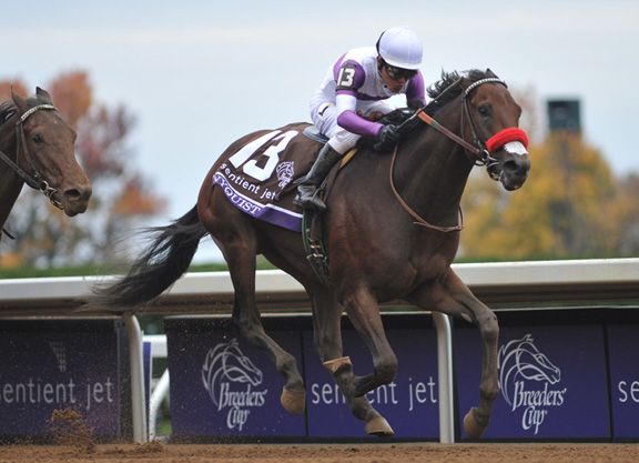 Nyquist Faces Compact Group in San Vicente | TDN [Thoroughbred Daily News]