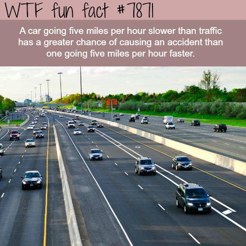 Don't drive slow - WTF fun fact