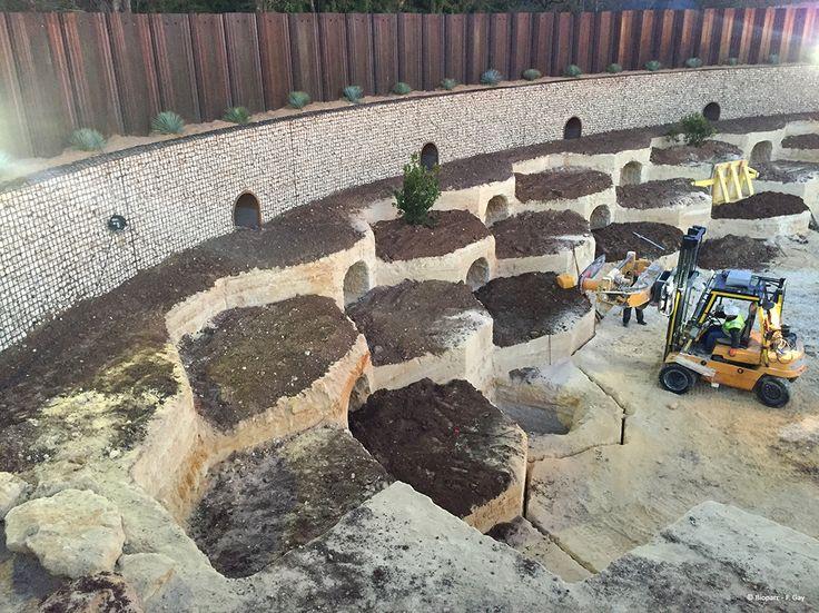 L'amphithéâtre se creuse...