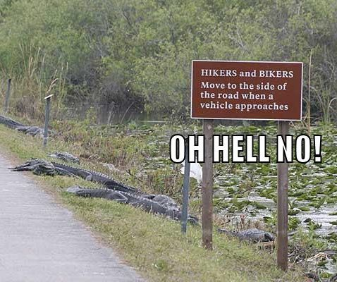 oh hell no....look closly...read the sign then notice the whats crawling outta the swamp!!! YIKES!!
