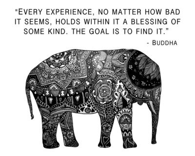 """""""every experience, no matter how bad it seems, holds within it a blessing of some kind. the goal is to find it"""""""