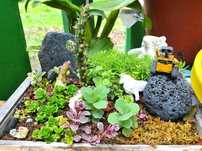 Wall-e's garden