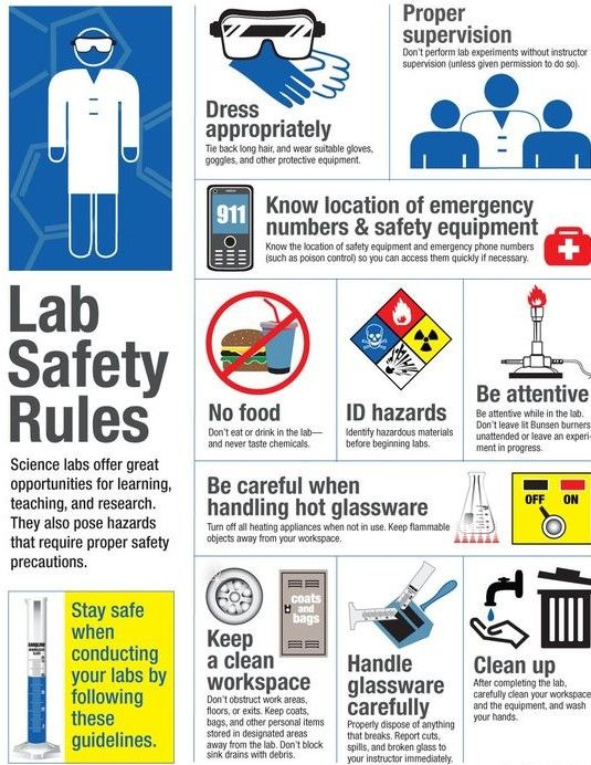The Most Important Lab Safety Rules That Always Need To Be Followed Lab Safety Rules Science Lab Safety Lab Safety