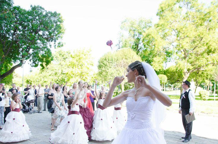 Ujszászi Zsuzsanna fotós oldala | Esküvői galéria