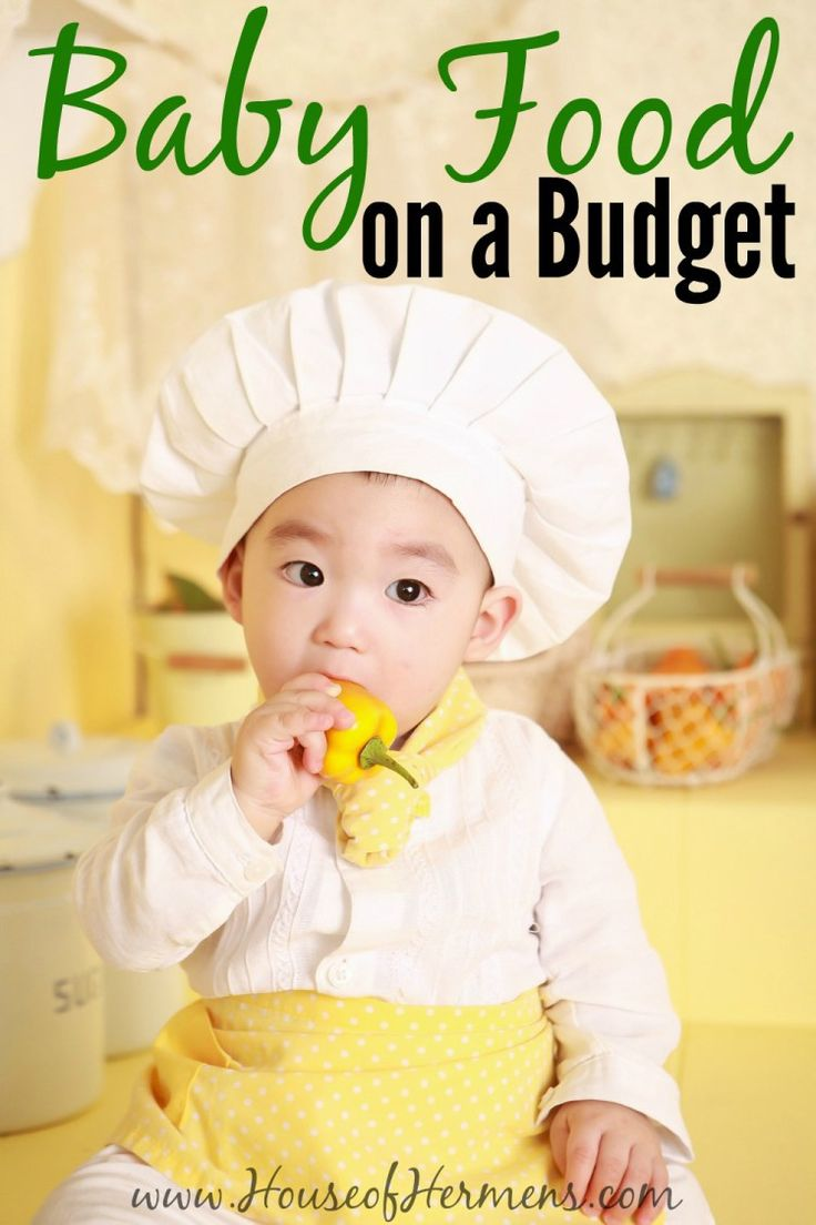 Sick of the high price of Gerber?  You can save so much money by making baby…