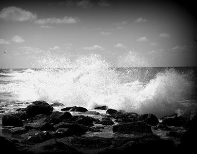 "Bekijk mijn @Behance-project: ""Sea life 13"" https://www.behance.net/gallery/27850509/Sea-life-13"