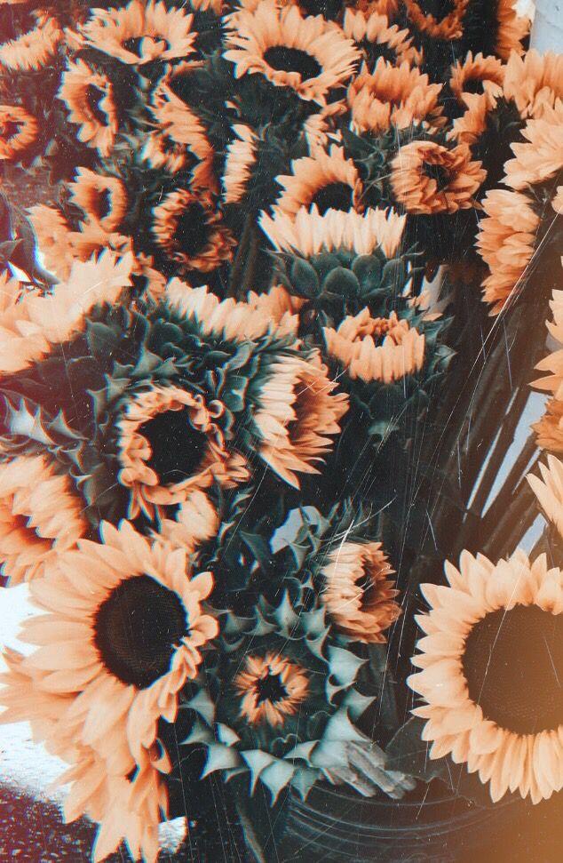 #flowers #vintage | Vintage flowers wallpaper, Phone ...