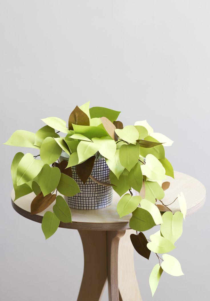 Weinig licht in huis? Papieren planten knutselen http://blog.huisjetuintjeboompje.be/licht-huis-papieren-planten-knutselen/