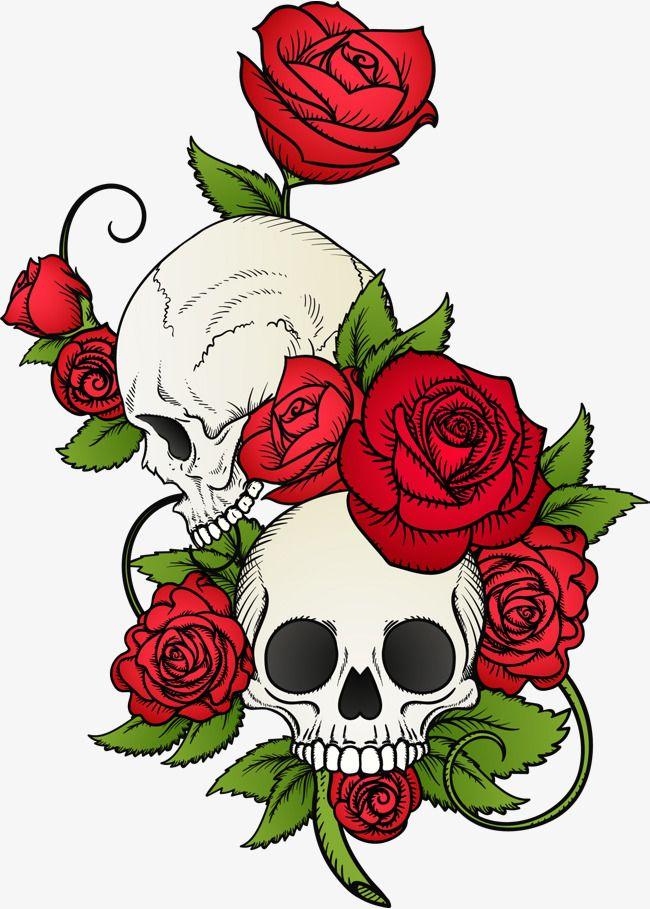 Vector Hand Painted Skull And Flowers Vector Hand Painted
