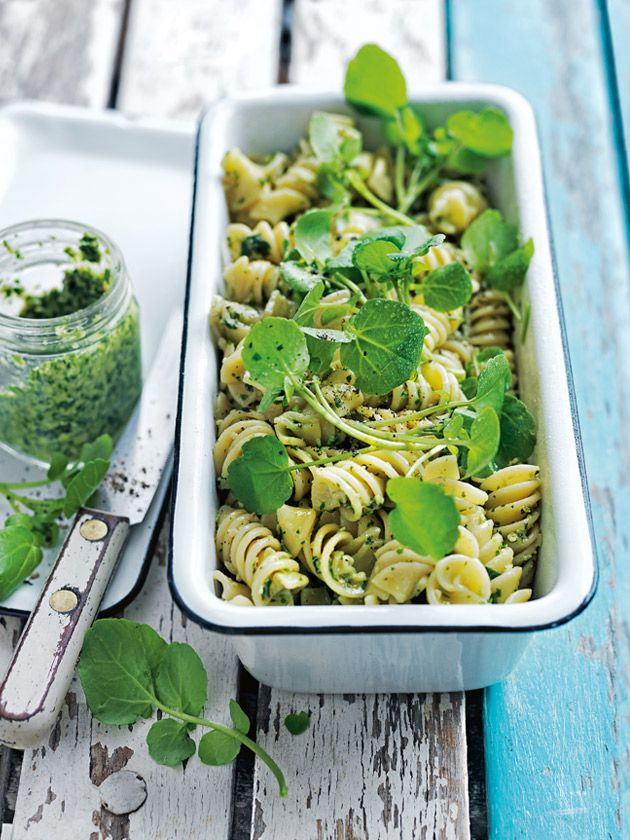 watercress and walnut pesto pasta salad from donna hay summer
