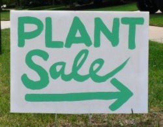 Starting a backyard nursery is fairly easy and cheap in comparison to opening a commercial plant nursery in town. The startup costs, time to get it going and space needed will be determined by what type of backyard nursery you plan on starting. If...