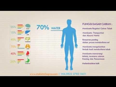 manfaat milagors untuk mengobati kanker   WA.0822 2783 5601