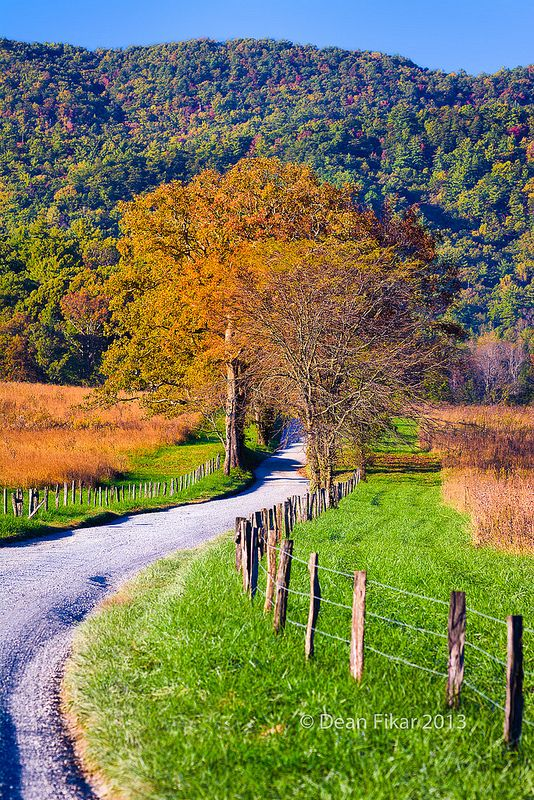 ˚A winding country road in Cade's Cove, Great Smoky Mountains National Park - Tennessee