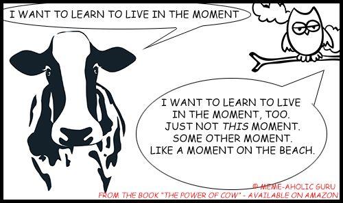 "Live in the Moment Meditation Meme - From the book ""The Power of Cow"" by Meme-aholic Guru .........................................................................................................................[Keywords:funny yoga memes, yoga jokes, anti-stress memes,  yoga funny meditation quotes, meditation jokes, funny yoga cartoon quotes, spiritual memes, funny meditation meme, funny mindfulness jokes and memes, mindfulness funny quotes, live in the moment funny memes]"