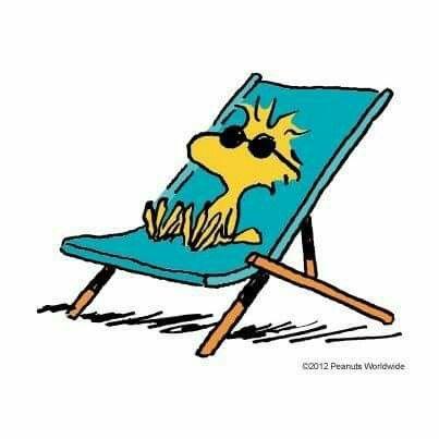 204 besten peanuts snoopy bilder auf pinterest becher. Black Bedroom Furniture Sets. Home Design Ideas