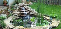 Az ideális kerti tó