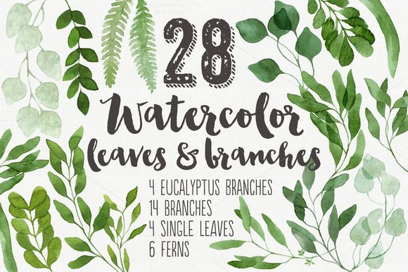 28 Watercolor Branches and Leaves by Helga Wigandt on Creative Market