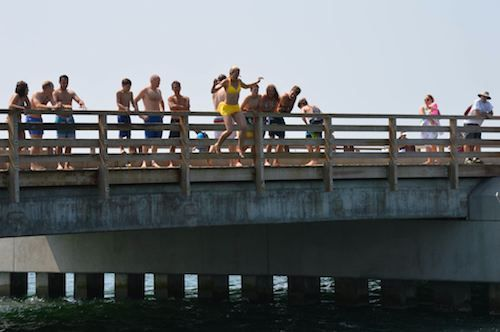 Jumping from Jaws Bridge - What to do on Martha's Vineyard