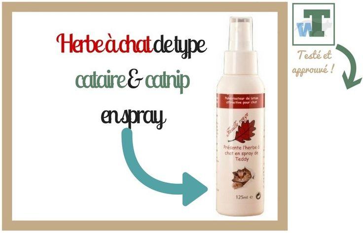 spray anti miaulement
