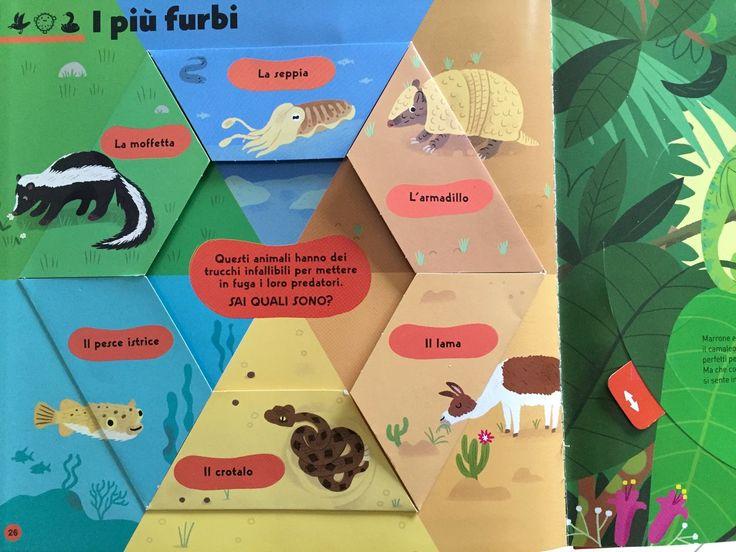 Baussier, Balicevic, Il libro pop-up degli animali, Editoriale Scienza http://www.scaffalebasso.it/libropop-upanimali/