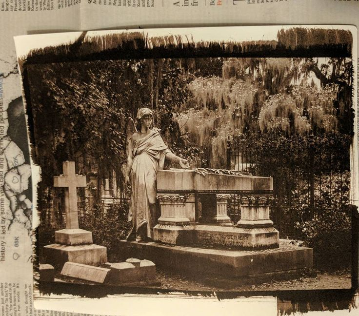 Graveyard Angel Kallitype  #graveyard #graveyardangel #angel #bonaventure #bonaventurecemetery #savannah #southerncemetery #spanishmoss  #altprocess #alternativeprocess #kallitype #artbizcoach #pattyhankins