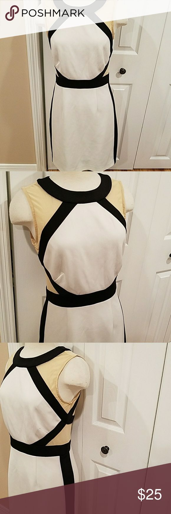WALTER BAKER BLACK AND WHITE DRESS! Gorgeous dress! Black,  tan and white. Fully lined, zip up back.  Hits at knee. GREAT CONDITION! Size small perfect for a size 4/6 W118 by Walter Baker Dresses