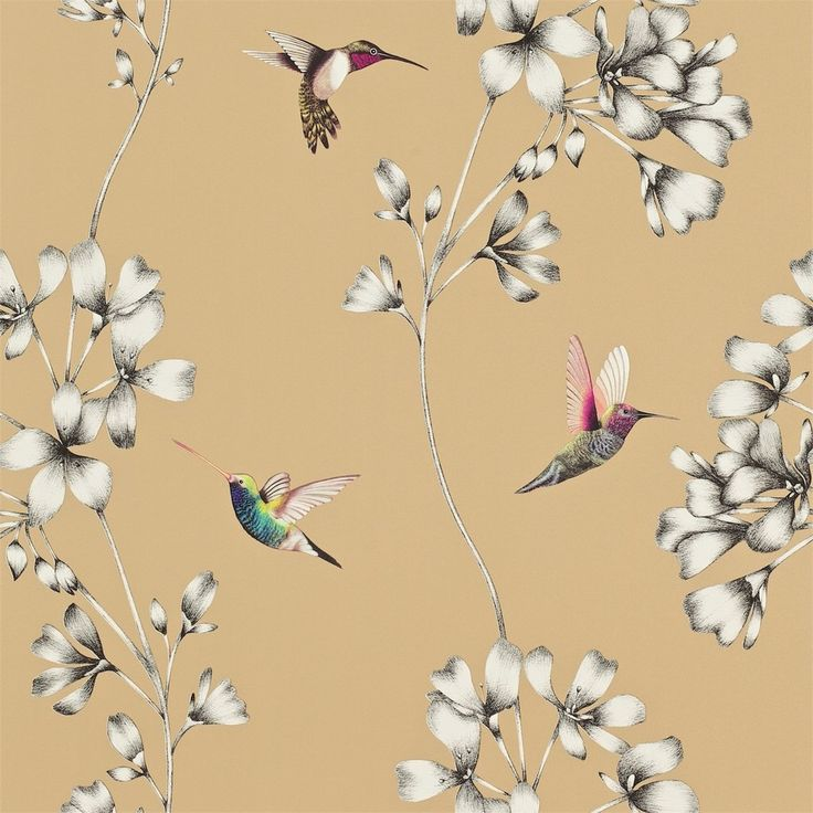 Colibrì carta da parati a fiori ed uccelli - Italian Vintage Sofa