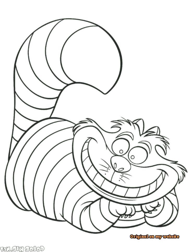 Art Drawings Tumblr   Grinsekatze   Disney malvorlagen ...
