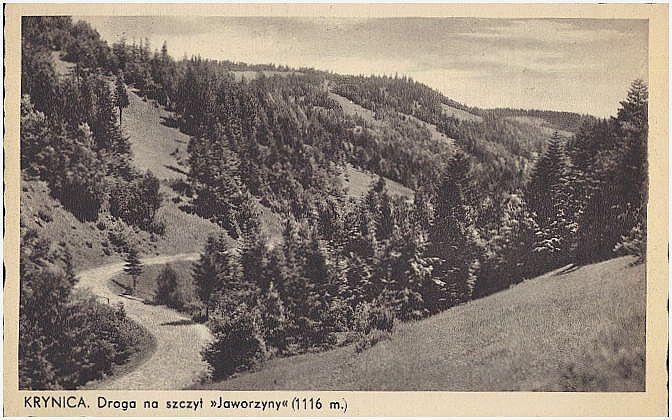 pocztówka Krynica-Zdrój Krynica. Droga na szczyt