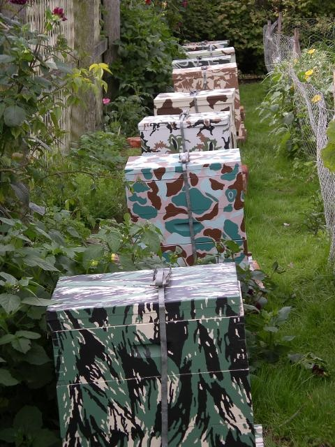 Fiona Hall, Breeding Ground, 2007, 11 painted beehives and planted garden bed, installation view at Trentham Cottage garden, Port Arthur. Courtesy the artist and Roslyn Oxley9 Gallery, Sydney. Photograph: Fiona Hall