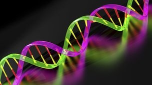 Men with prostate cancer and an inherited gene mutation have the worst form of the disease, research reveals. The BRCA2 gene is linked to hereditary breast cancer, as well as prostate and ovarian cancer. Now scientists say that as well as being more likely to get prostate cancer, men with BRCA2 are also more likely to develop aggressive tumours and have the poorest survival rates.