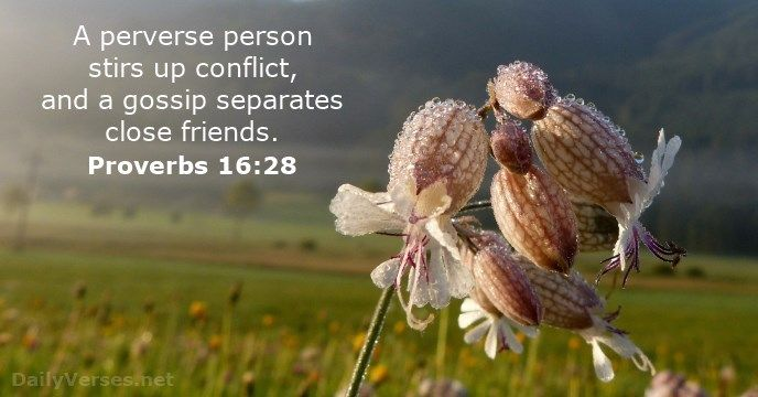 """Proverbs 16:28 """"A perverse person stirs up conflict, and a gossip separates close friends."""""""