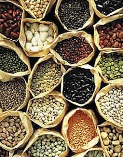 À l'approche de la belle saison, pourquoi ne pas commencer son magasinage en ligne afin de vous procurer les semences biologiques et/ou anciennes du Québec afin de débuter dès que possible votre jardinage. Les suggestions de Trucs Écolo!