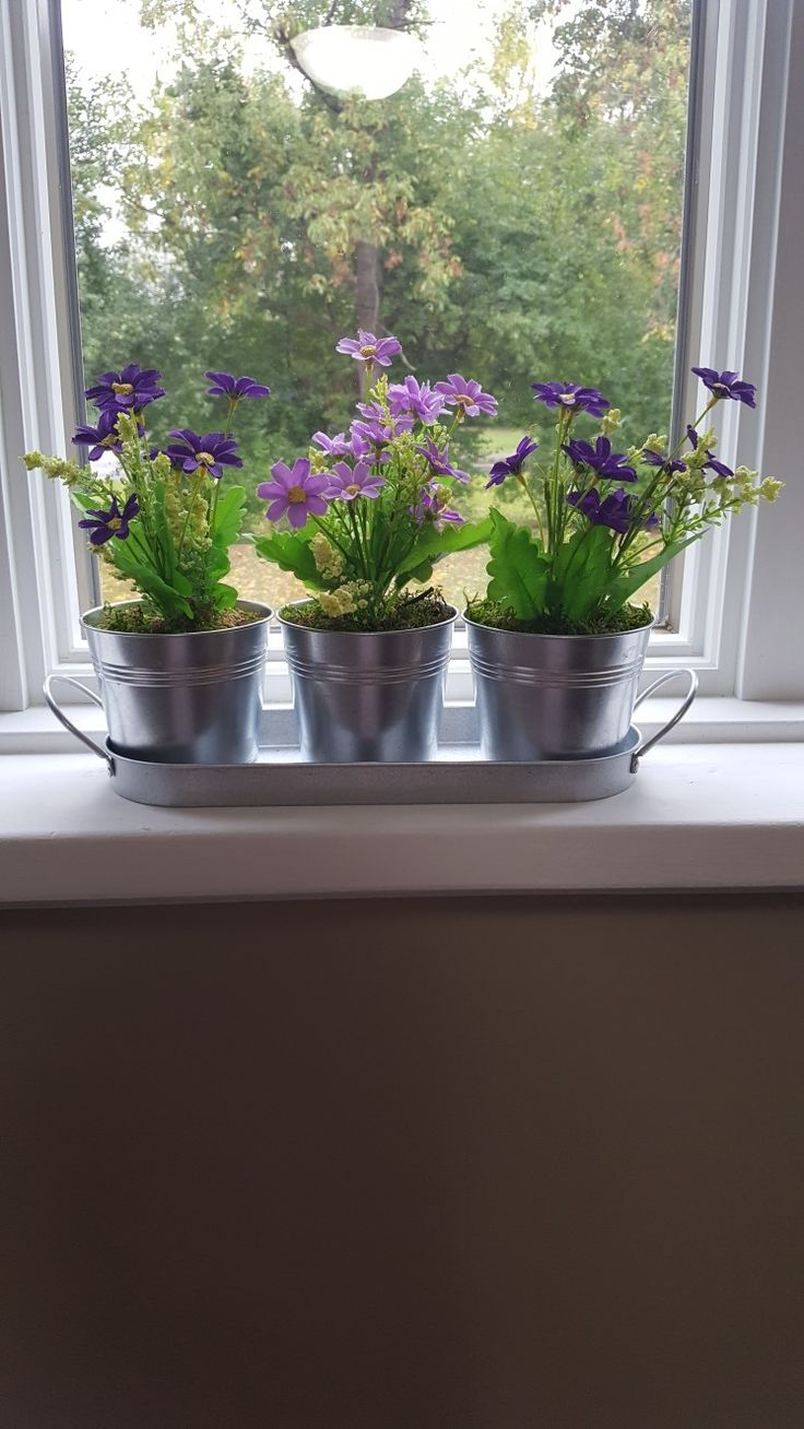 DIY home & window sil decor--mini tin buckets with tray. Add 2 bouquets of flowers and split them up into the 3 buckets add pea moss. Items all from Dollarama dollar store