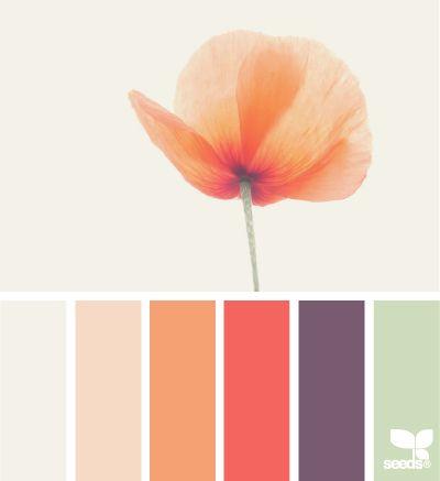 poppy tones