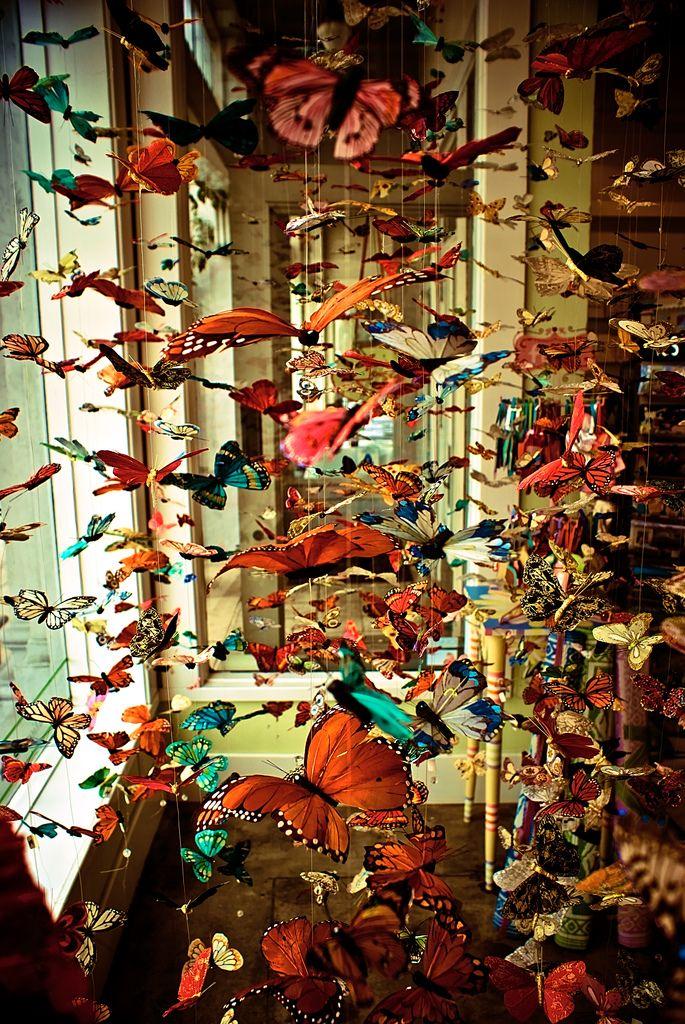Gregory DavidsonBeautiful Butterflies, Ghd Photography, Inspiration, Dreams, Butterflies Room, Colors, Butterflies, Art, Things