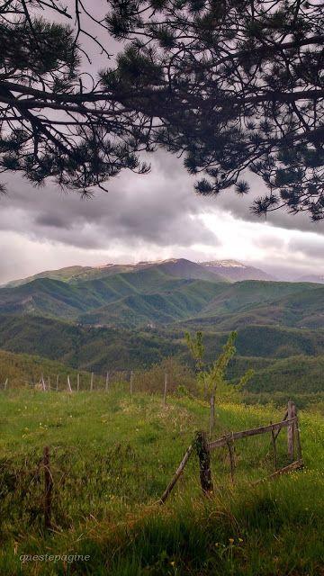 Queste pagine: L'Abruzzo lento e selvaggio - Parco Nazionale del ...