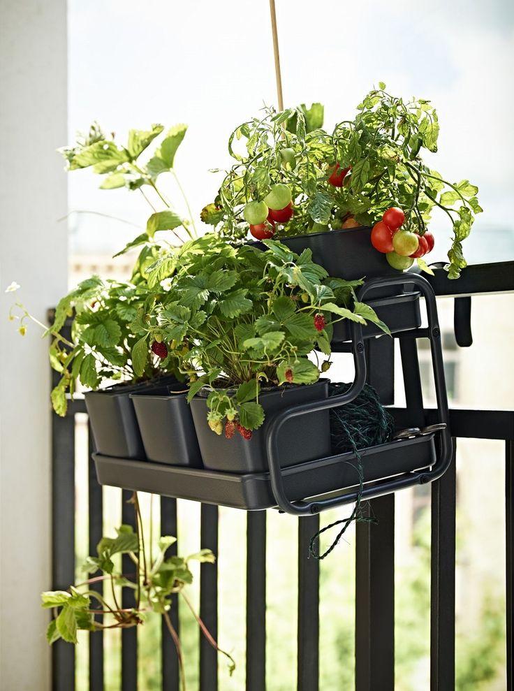 Květináče se stojanem můžete zavěsit nebo postavit na balkon, ušetříte si místo.