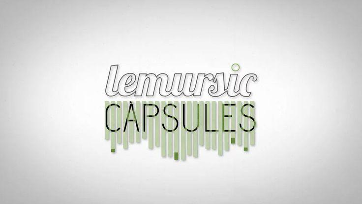 Lemursic on Vimeo