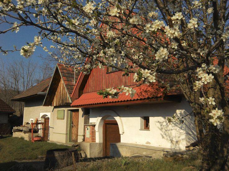 krása ľudovej architektúry... vínne pivnice v Pečeniciach