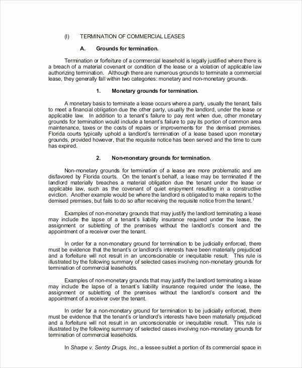 Luxury Mercial Lease Agreement 10 Free Pdf Word Documents