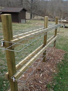 Raspberry trellis using hog fencing. Would this work as a living fence between the rental house and the neighbor?