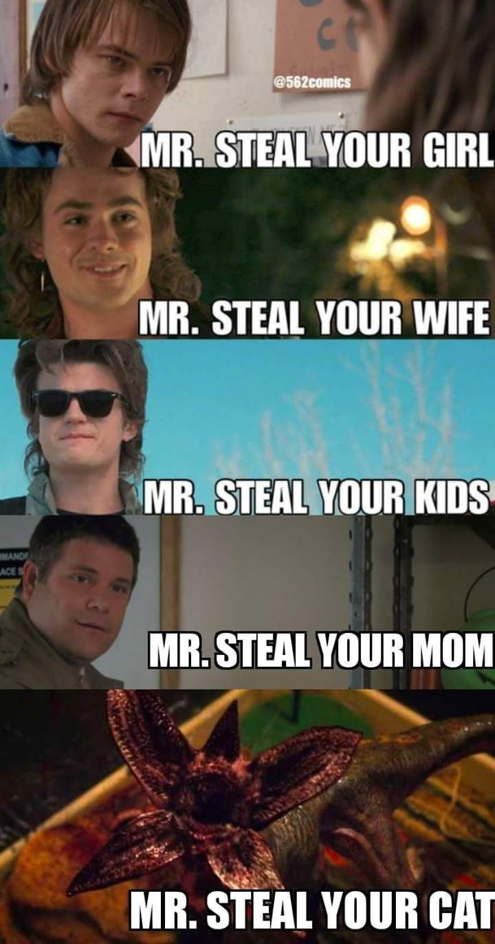 Mr. Steal Yo...
