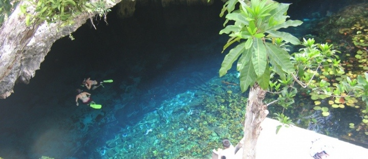 Marine Conservation in Mexico