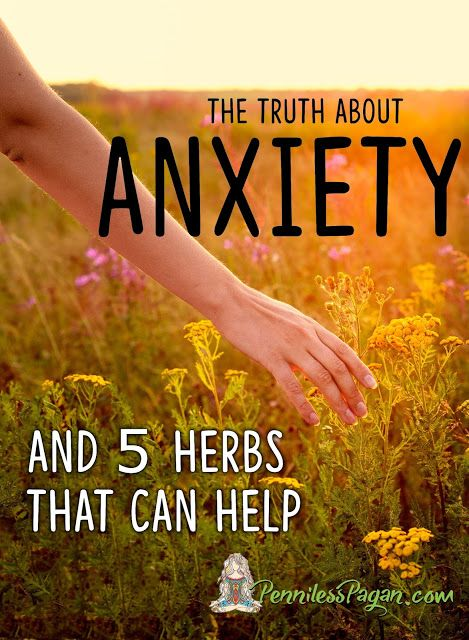 The Truth About Anxiety and Herbs to Help Pagan, Wiccan, Witch, Natural Medicine, Herbal Medicine, Simplify, Holistic, Anxiety, Stress, Stress Management, Health and Wellness