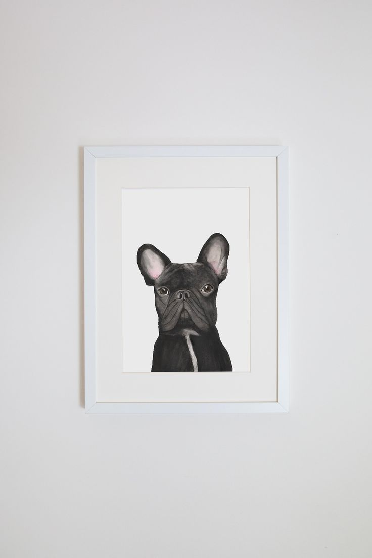 For ME by Dee - Gilbert the French Bulldog Print ($49)