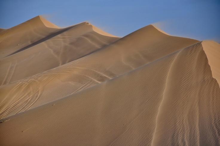 Dunas de arena en Pinamar, Argentina/ Sand dunes in Pinamar Beach, Bs As province.